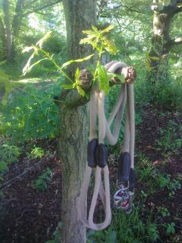 Leinen am Baum1