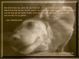 Spruchbild6 Seelenhunde